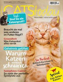 Warum Katzen wirklich schnurren